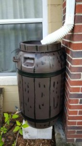 painted rain barrel installed
