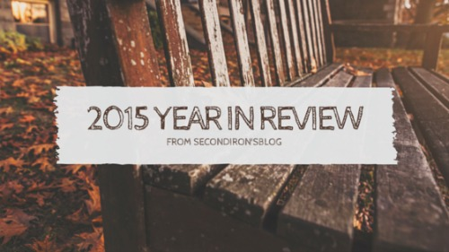 My Year in Review (2015)